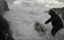 An Old Dude Getting Swept Out To Sea Is Pretty Much The Scariest Video Ever