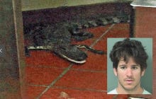 Does This Look Like The Face of A Florida Bro Who Chucked A 3.5 Foot Alligator Through The Wendy's Drive Thru Window?