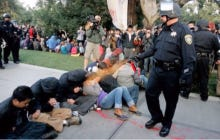 UC Davis Spent $175,000 To Try And Scrub Pictures Of The Infamous Pepper Spray Cop Off Of Google