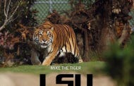 PETA Picks A Fight With LSU, Demands They Stop Having A Live Tiger Mascot