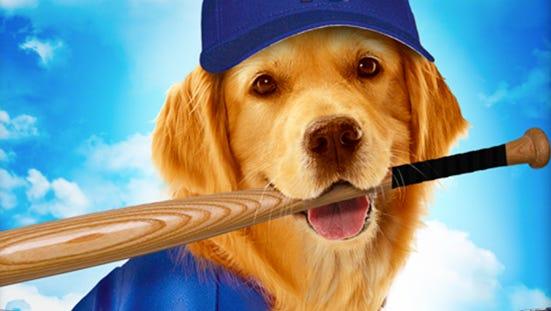 Why Aren't All Baseball Teams Using Golden Retrievers As Bat Boys?