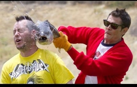 Wake Up With Some Clips From 'Jackass'