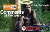 Get Your Dicks Out For Harambe With This Edition Of Top P-hub Comments Of The Week