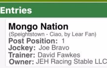 "Mike Francesa's Horse ""Mongo Nation"" Is Running Tomorrow At Saratoga"