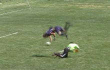 Is This Soccer Player's Front Flip Goal All Talent Or All Luck?