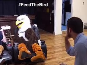 At Least The Grown Ass Man Dressed As An Eagle Was Fed Well All Day Long #BigBirdBigCat