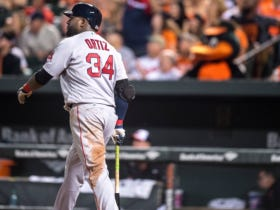 Bird Watching – In The Biggest Series Of The Year, The Orioles Got Swept By Boston And Lost Their Wild Card Spot