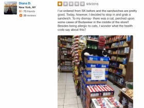 Some Lady Had The Nerve To Leave A 1-Star Yelp Review Because Her Local Bodega Had A Cat Living In It