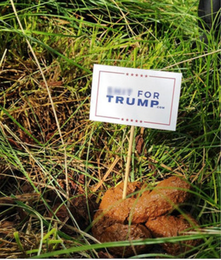 Is Decorating Dog Poop With Signs The Most Peaceful Way To ...