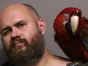Does This Look Like The Face Of A Man That Asked To Have His Mugshot Taken With His Pet Parrot? (Yes. Yes It Does.)