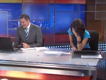 The Rascals At This News Station Can't Stop Laughing While Talking About Beavers
