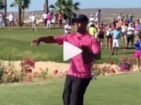 Breaking News -- Tiger Woods Has A CANNON