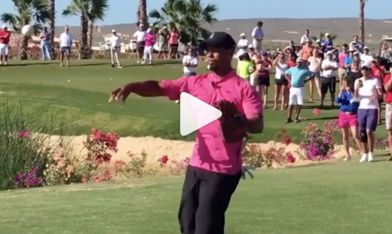 Breaking News — Tiger Woods Has A CANNON