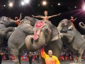 The Ringling Brothers Are Closing Their Curtain For Good And That's A Damn Shame