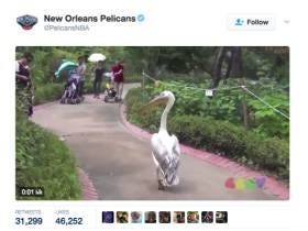 The New Orleans Pelicans Dropped The Tweet Of The Night After They Traded For Boogie Cousins