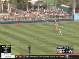 I Can Always Appreciate A Good Spring Training Fuck Up