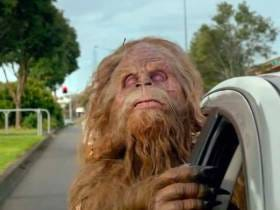 Seeing A Sasquatch Is A Very Valid Excuse For Crashing Your Car