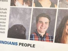 Student's Service Dog Gets His Picture In The Yearbook, Absolutely Crushes It