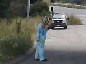 Big Win For Everyone, Fake Clown Doused in Fake Blood Slinging Around a Machete is Arrested For Threatening Drivers