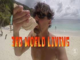 3rd World Living: Shell Shots