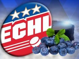 Rock The Vote: This Semi-Pro Hockey Team Has A Chance To Be Called The