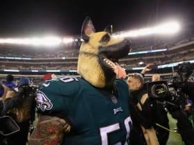 There Are Going To Be 70,000 Eagles Fans Wearing Dog Masks At Lincoln Financial Field On Sunday Night. Pray For Case